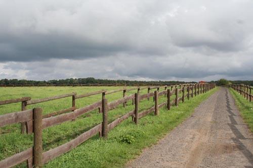 Pastviny pod Řípem